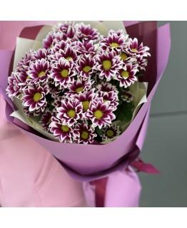 Букет з ромашковою хризантемою Еріка