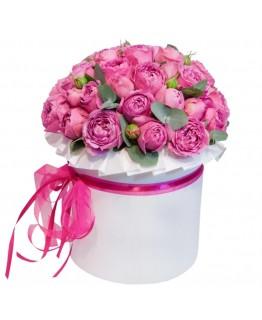Коробка з кущових піоновидних троянд Рожеве мереживо