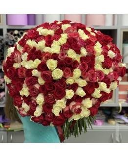 Букет з 301 троянди