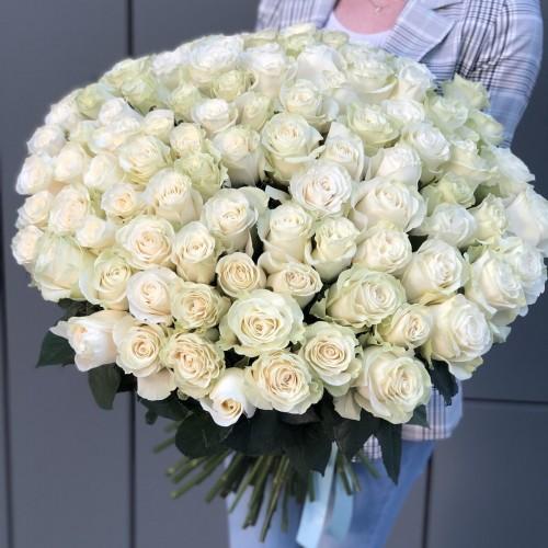 Букет з білих троянд Вічна класика