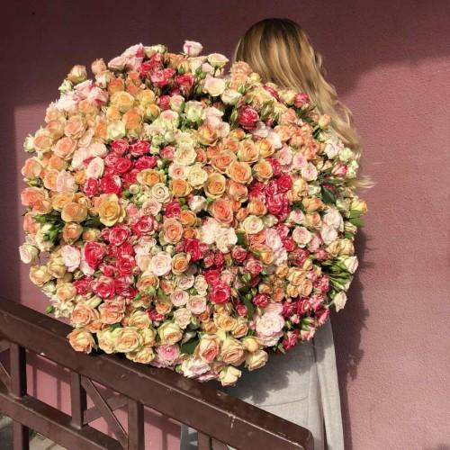 Мікс кущових троянд Кендіс