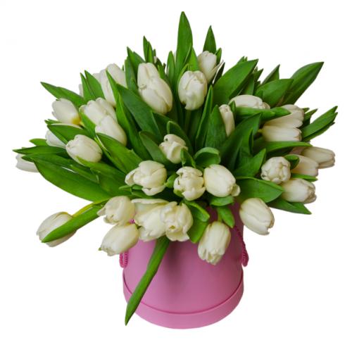 Коробка білих тюльпанів Ніна