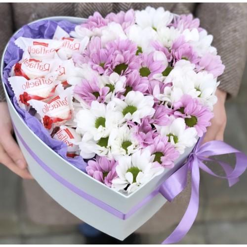 Коробочка з хризантеми Серце красуні