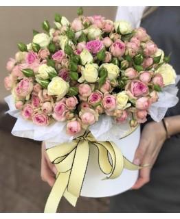 Коробочка з кущовою трояндою Хмарка